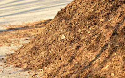 How to Mulch correctly